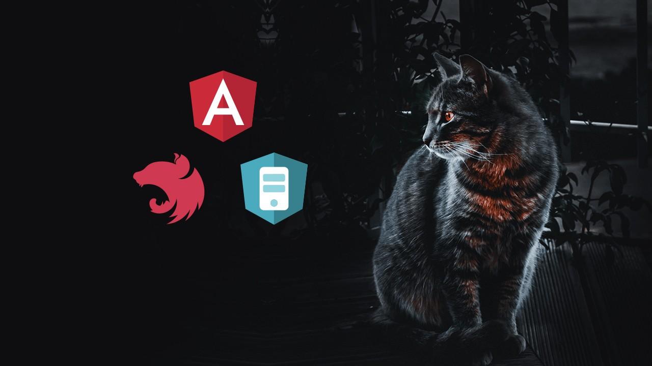 Angular Universal - NestJS ile Server Side Rendering